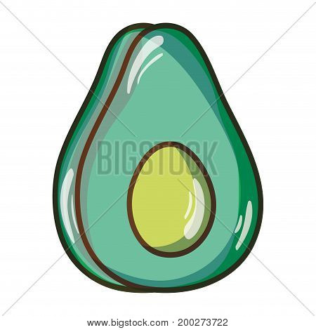 delicious avocado fruit with protein nutrition vector illustration