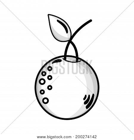 line delicious orange fruit with protein nutrition vector illustration