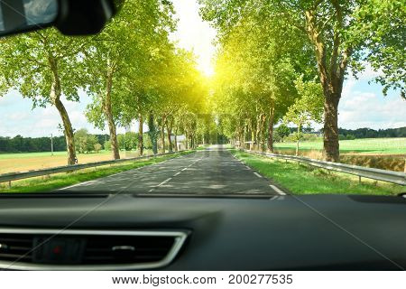 View of the road and forest through the windshield of the car Sunbeams