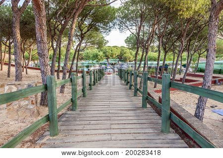 Wooden walkway under the pine trees on a campground in southern Spain