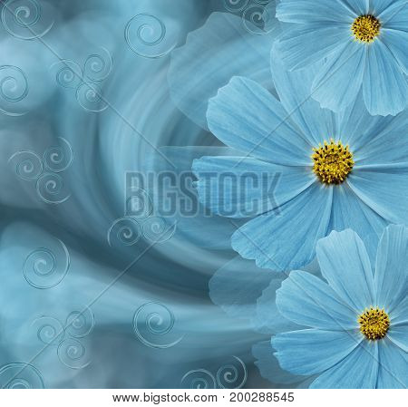 Floral turquoise beautiful background. Flower composition.  turquoise flowers of daisies on a turquoise background.