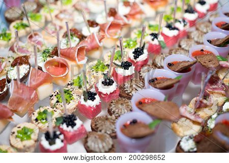 Different Canapes With Smoked Salmon, Cucumber And Red Currant Served On Sea Shell Over A Mirror Pla