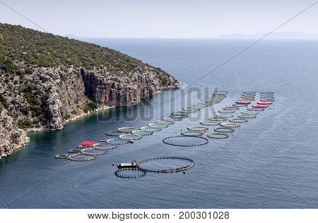 Growing fish in the open sea, view of the ponds with fish