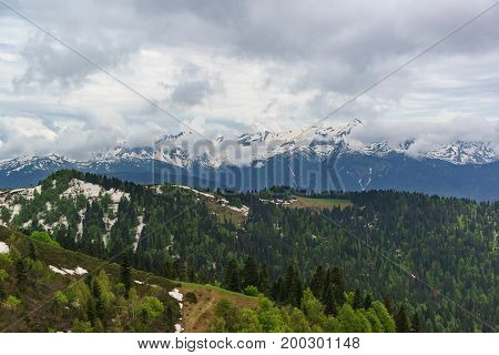 Young Greens Of Deciduous Trees And The Dark Needles Of Fir Trees, Remnants Of Snow On The Slopes Of