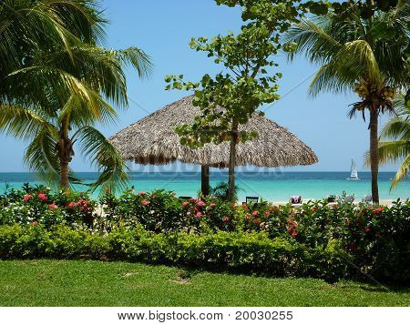 Tropical View in Negril, Jamaica