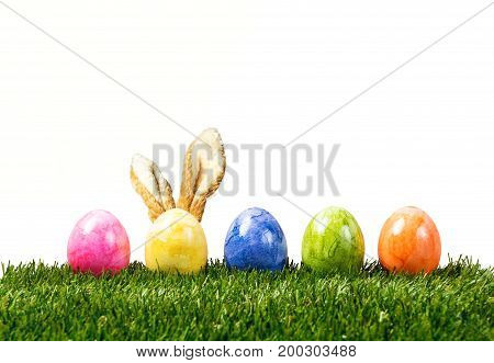 A row of five colorful easter eggs on green grass with bunny ears in Springtime isolated on white
