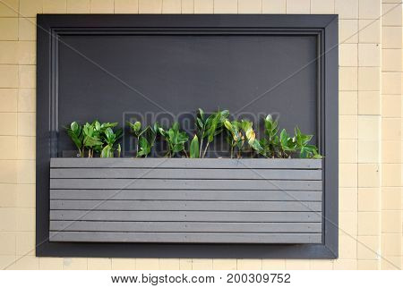 Wall-mounted flower bed as a part of street venue decor