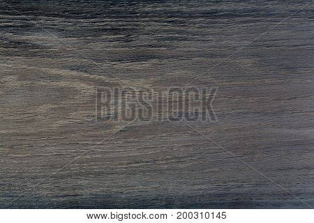 Very dark texture of black natural wood. Oak. High resolution photo.
