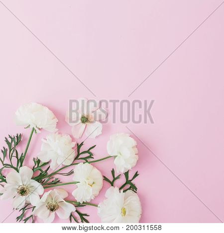 White flowers arrangement on pink background. Flat lay, top view. Flowers background.