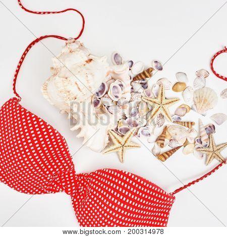 Lady's Swimwear. Stylish Beachwear On White Bakcground
