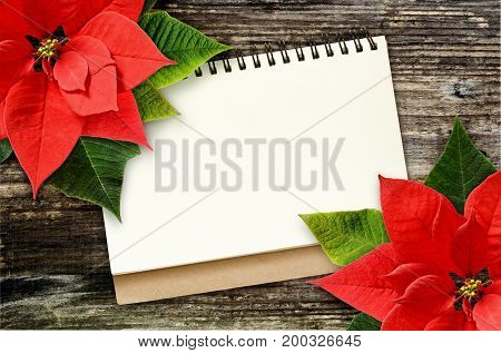 Notebook with Christmas poinsettia flowers on wooden background. Flat lay. Top view.