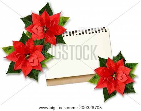Christmas poinsettia flowers and note on white background. Flat lay. Top view. Mock-up.