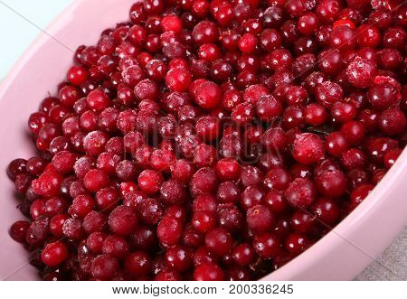 Plate with frozen cowberry for winter in rose plate