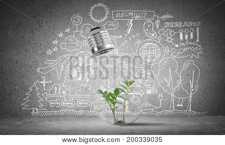 Lightbulb with green plant inside placed against sketched eco-analytical information on grey wall. 3D rendering.