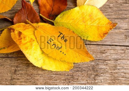 Pile of fallen autumn leaves with inscription THE END on the old wooden background