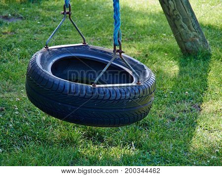 Tire swing hanging in a payground with green grass lawn background