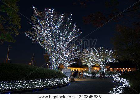 NAGASHIMA JAPAN - NOVEMBER 15 2015: Nabana no Sato light festival at Nagashima Mie Prefecture. Japan