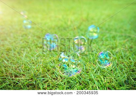 soap bubbles laying on green grass background. A soap bubble is an extremely thin film of soapy water enclosing air that forms a hollow sphere with an iridescent surface.