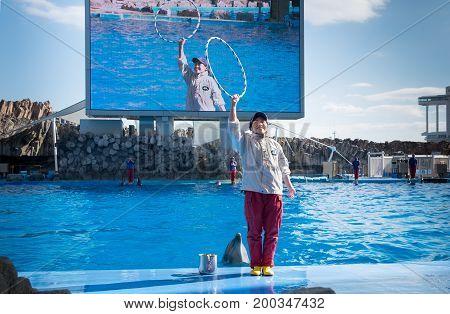 NAGOYA JAPAN - DECEMBER 05 2015: Dolphin and his trainer in Port of Nagoya Public Aquarium