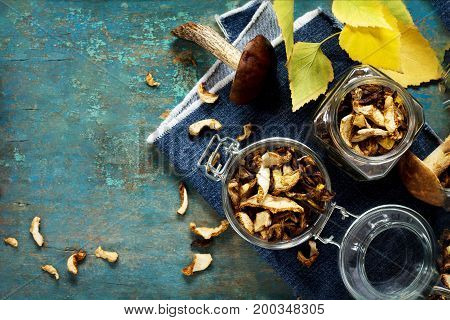 Assorted Forest Mushrooms. Dried Mushrooms And Autumn Leaves. Flat Lay, Top View. Copy Space.