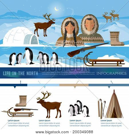 Wild north arctic infographic people in traditional eskimos costume and arctic animals. Life in the far north. Reindeer penguins sledge Extreme journey to Alaska infographics