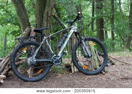 Mountain Bike Tied To A Tree In The Woods In The Summer Morning.