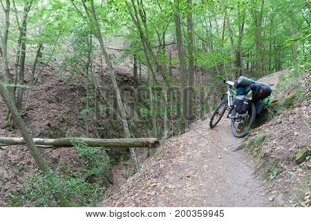 Mountain Bike With Saddlebags In The Woods.