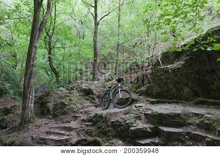 Mountain Bike On Tourist Path In The Woods.