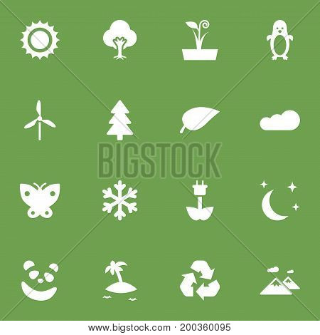 Collection Of Foliage, Wind Energy, Bear And Other Elements.  Set Of 16 Ecology Icons Set.