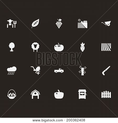 Collection Of Combine-Harvester, Rural, Hacksaw And Other Elements.  Set Of 20 Harvest Icons Set.