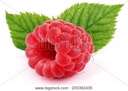 Single Raspberry Fruit With Green Leaves Isolated On White