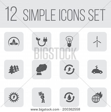 Collection Of Reforestation, Saving, Fan And Other Elements.  Set Of 12 Ecology Icons Set.