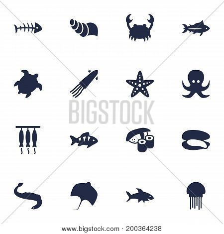 Collection Of Remains, Tortoise, Smoked And Other Elements.  Set Of 16 Food Icons Set.