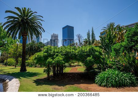 WESTERN AUSTRALIA, PERTH - NOVEMBER 2016: A view to Perth City from Government House landscaped gardens