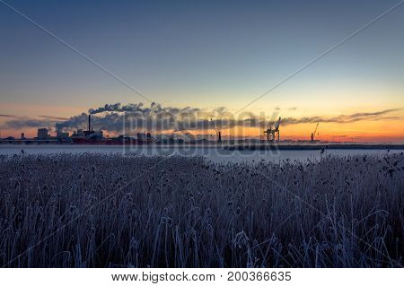 industry and ships with smoking chimneys and nature reed landscape in sunrise shows contrasts between nature and industry