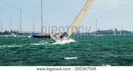 Sailing activities. Monohull Yacht club competition racing flat chat at full speed with fair wind in Lake Macquarie Belmont New South Wales Australia.
