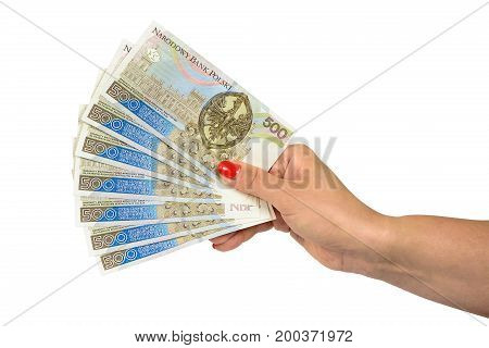 Female hand holding set of 500 pln banknotes isolated on white background with clipping path