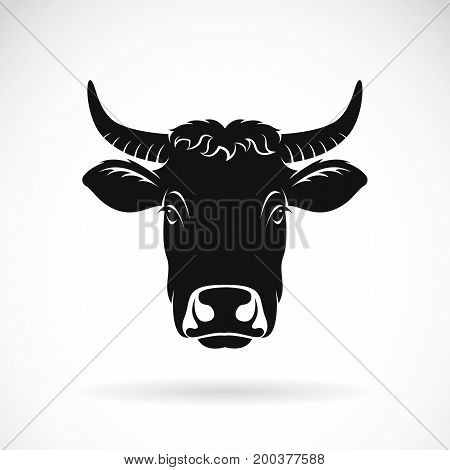 Vector of cow face on white background. Farm Animal.