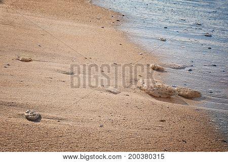 Beautiful sea beach at resort, closeup
