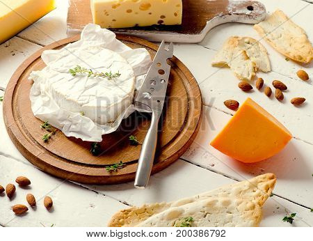 Different Kinds Of Cheeses On A White Background