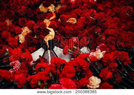 Background of red carnations, eternal fire, soldiers' helmets. Concept is the beginning and end of Second World War, memory of soldiers, day of victory, bloody wars.