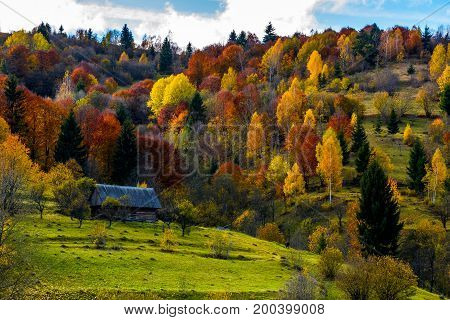 Abandoned House In Autumn Forest On Hillside