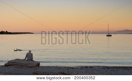 A gray haired man seated on driftwood looking at the sailboats on the ocean at sunset. He is wearing a suit jacket.