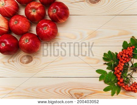 Autumnal fruits.apples and rowan-berry.autumn wooden background.top view.