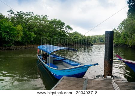 Blue boat docking on a wooden pier in Kilim forest in Langkawi with forests and a cloudy sky in the background. This is a popular river tour for visitors
