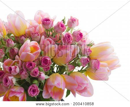 Bouquet of fresh pink and yellow tulips and roses flowers isolated on white background