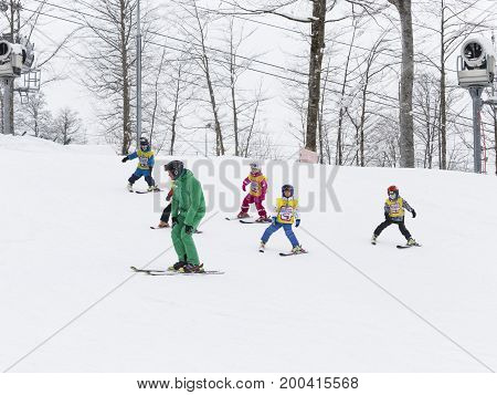 Sochi - March 28 2017: Young children in mountain skiing learn to ski with a coach in green uniforms in the mountains March 28 2017 Sochi Russia