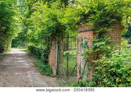 Closed black iron gate between two brick pillars. The gate and pillars are overgrown with green climbing plants.