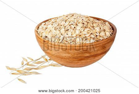 oat flakes in bowl and ripe oat ears isolated on white background. Uncooked oatmeal