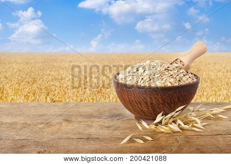 ears of oats and oatmeal with scoop in bowl on wooden table with field on the background. Ripe field, blue sky with beautiful clouds. Uncooked porridge